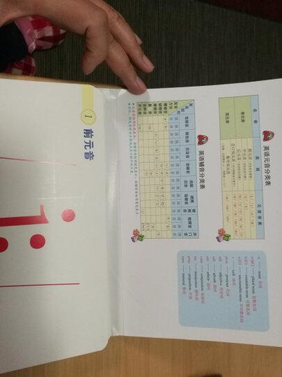 新编英语国际音标入门学习卡片 晒单图
