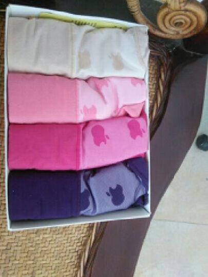 magic PINK女士内裤纯棉性感内裤女式中腰塑身无痕三角裤 均码 四条装颜色组合 均码 晒单图