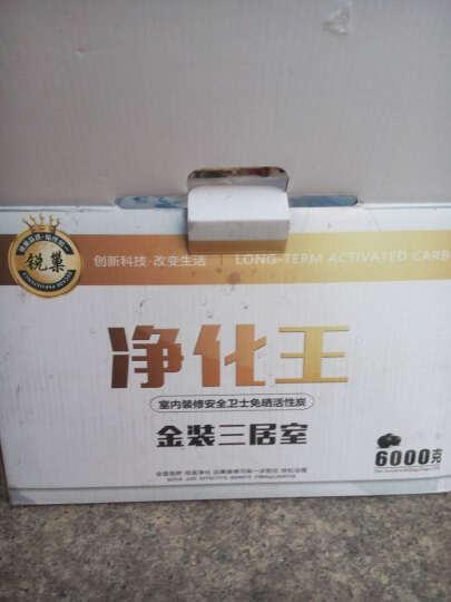 锐巢 测甲醛检测仪器 十合一雾霾PM2.5空气检测仪器盒家用干湿度温度测试仪(加强版) 晒单图