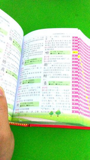 小学生全新彩色版工具书:多功能字典+成语+组词造句多音多义+歇后语谚语(套装共4册)(加印10次) 晒单图