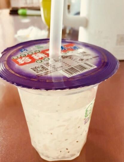 珍珠果 黄石米酒饮料288g*30杯早餐饮品整箱湖北特产 晒单图
