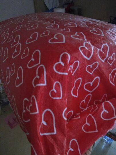 南极人 床垫子床褥子加厚学生床垫单人宿舍0.9上下铺寝室垫被1.2m1.5m1.8m可折叠垫背 驼色(厚约5cm) 1.5m床 晒单图