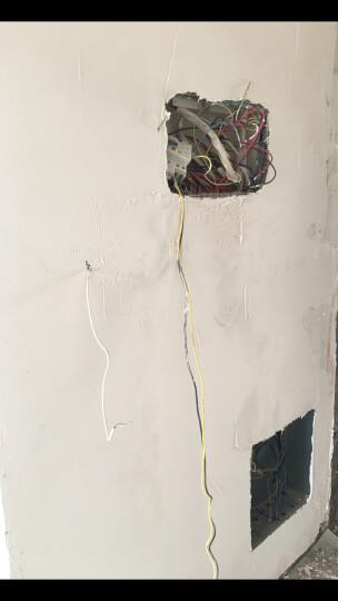 金龙羽 电线电缆ZR/ZC BVR1.5平方 国标铜芯线单芯多股软线 阻燃家装线100米 阻燃/黄绿双色多股 (软线) 地线 晒单图