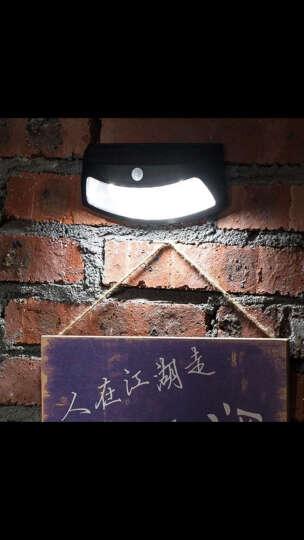 帝舜(DiSHUN)太阳能灯户外路灯庭院别墅小区公园照明智能模式感应家用室外防水灯 人体感应笑脸灯黑色 晒单图
