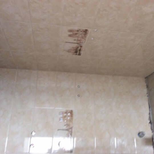 宝润 瓷砖 卫生间瓷砖300 600 浴室墙砖 厨卫砖 防滑地砖 防污建材家装 卫生间花片300*600mm 600*300花片/墙砖 晒单图