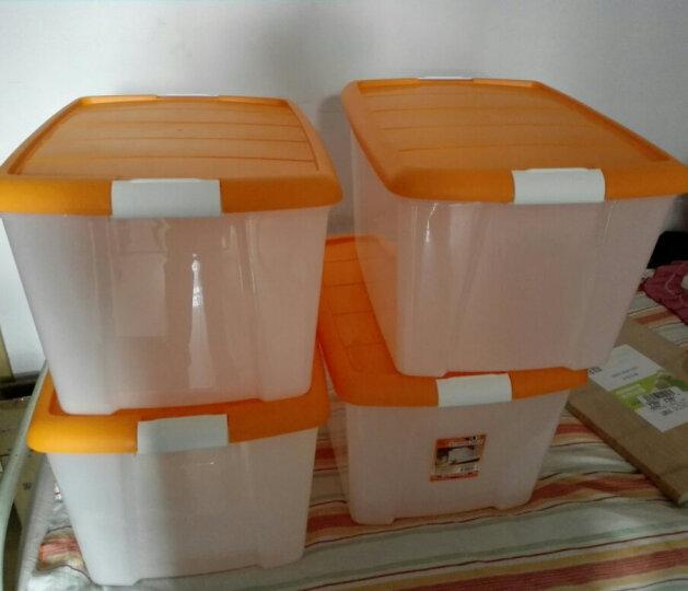 爱丽思IRIS 环保塑料整理收纳箱TB-54D 橙色 50L 晒单图