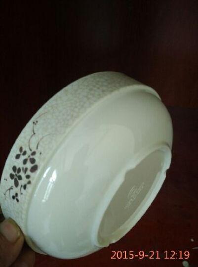 奇达 奇达 密胺仿瓷餐具青荷碗日韩式碗塑料面碗汤碗快餐碗饭碗直边碗料理店碗酒店碗加厚 6.5英寸/直径16.5高6CM 晒单图