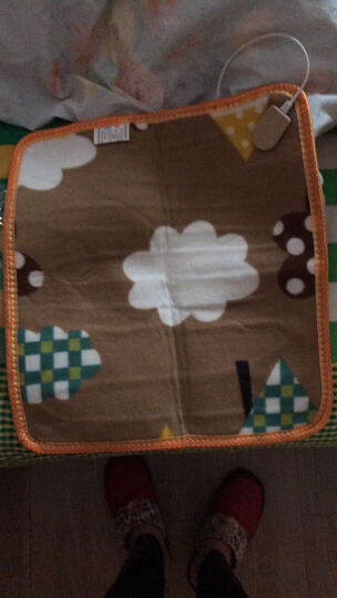 虹彩阳华多功能小电热毯坐垫 双层电热垫 办公室加热垫椅垫电暖垫 暖脚垫  毛毯垫子 图案随机发 晒单图