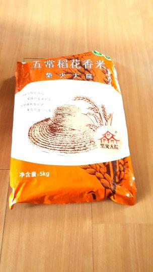 柴火大院 五常稻花香大米 (东北大米 当季新米)500g 晒单图