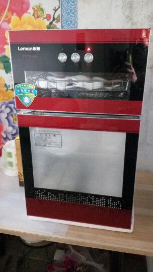乐曼(leman)消毒柜立式 家用消毒碗柜二星级高温消毒 LM168H08/高温+臭氧/独立双模消毒柜 晒单图