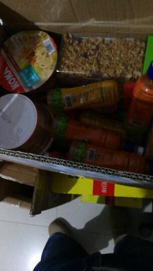 yoki 马来西亚进口果汁饮料 yoki洋一力多汁水果饮料 儿童饮品250ml/瓶装 橙味 晒单图
