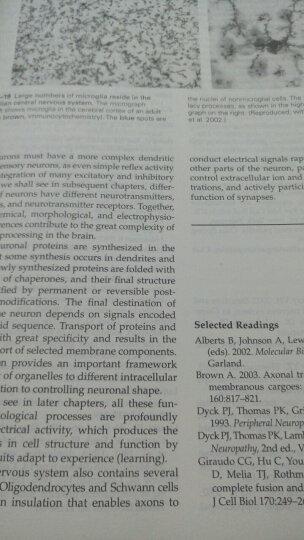 神经科学原理(英文版·原书第5版)(套装上下册) 晒单图