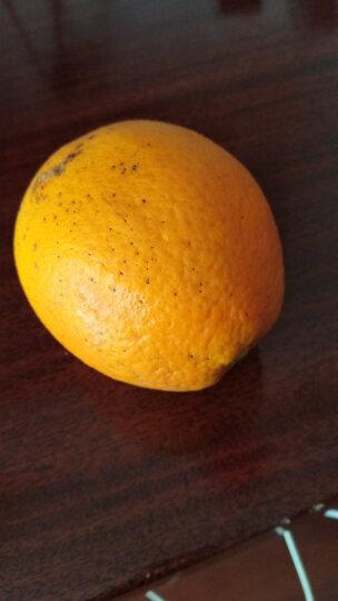 【宜昌扶贫馆】伦晚脐橙鲜橙 橙子 新鲜现摘水果新鲜采摘 5斤 晒单图