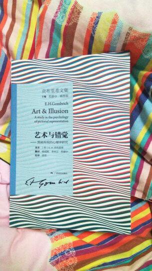 贡布里希文集艺术与错觉:图画再现的心理学研究 晒单图