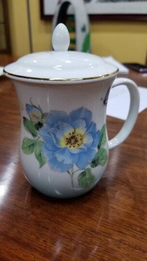 auratic 国瓷永丰源渐变粉骨瓷茶杯陶瓷带盖杯套装水杯中国风杯子 渐变蓝-912003228048 晒单图