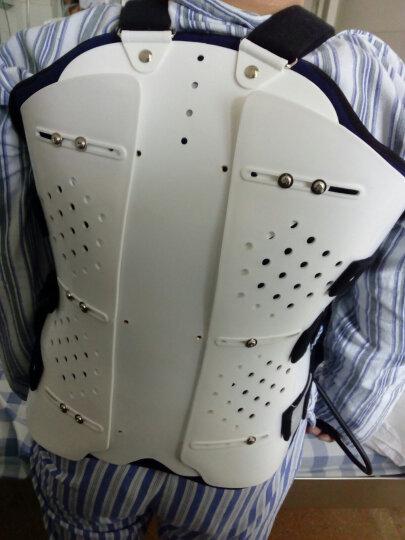 gobnel 医用可调胸腰椎固定支具支架腰间盘突出术后护腰带腰托脊椎矫形器护具 家百利背带透气款+气囊+工具 均码 晒单图