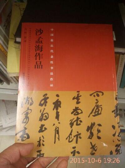 中国最具代表性书法作品·沙孟海作品 晒单图