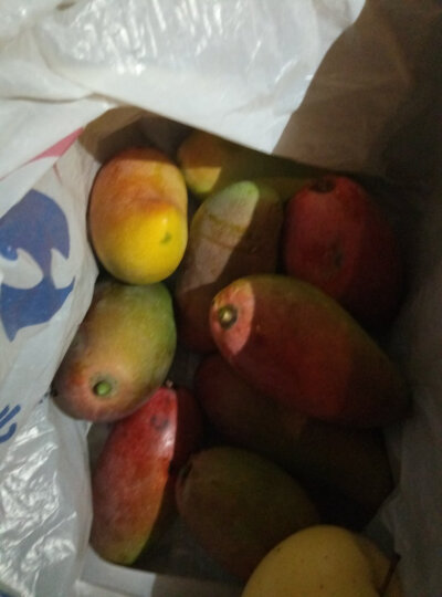 聚果臻品 海南贵妃芒果新鲜水果 大果 2.5kg 晒单图