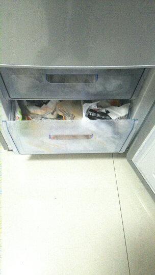 康佳(KONKA) BCD-288GY4S 288升 法式多门 电冰箱 保鲜节能 四门三温 家用节能 晒单图