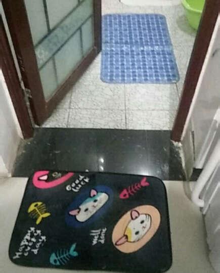 进门地垫入户蹭土门垫 厨房卫生间门口防滑吸水脚垫玄关地毯 古怪精灵 120*160厘米 晒单图