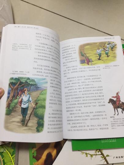 一生必读的经典世界10大名著(青少年版):童年·在人间·我的大学(超低价典藏版) 晒单图