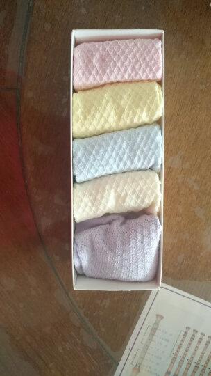 南极人(Nanjiren)儿童袜子 男童女童薄款棉质网眼袜子5双装 女童草莓 XL 晒单图
