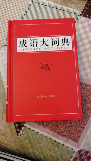 成语大词典(双色版) 晒单图