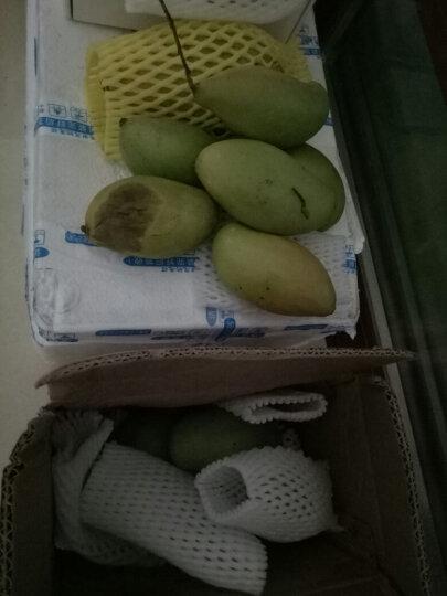 【顺丰配送】纯真鲜果 山东烟台黄金帅黄香蕉元帅粉面苹果 生鲜水果 晒单图
