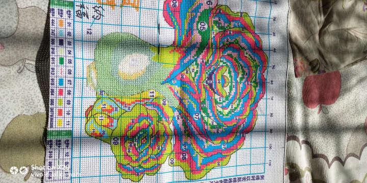 爱度ks 十字绣客厅新款十字绣卧室餐厅刺绣棉线中格 国宝熊猫 尺寸约40*55cm 套件 晒单图