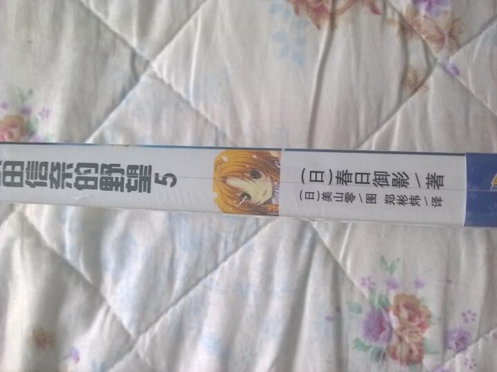 织田信奈的野望5 晒单图