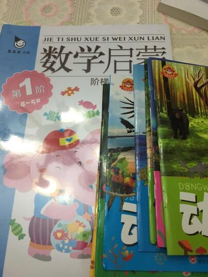数学童话 阶梯数学启蒙4~5岁全套4册 入园准备 幼小衔接 学前教育 从小爱数学 晒单图