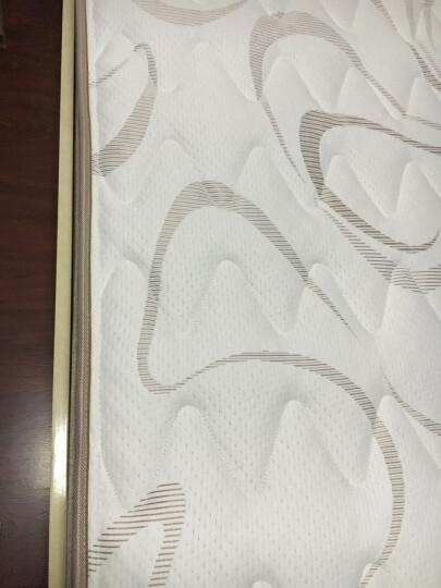 眠神(mianshen) 眠神 床垫 乳胶床垫1.8米 环保零甲醛 偏硬护脊弹簧床垫 偏软/THERMOLITE面料+乳胶+静音弹簧 1800*2000 晒单图