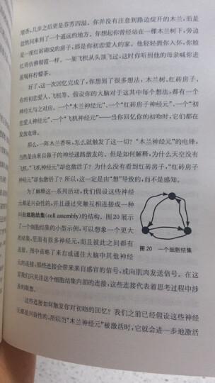 连接组:造就独一无二的你 晒单图