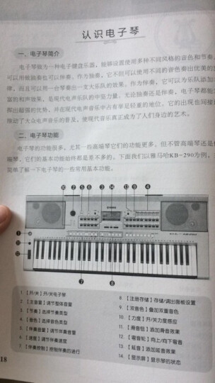 成人零基础适用最易上手的电子琴实用技巧入门教程:简谱电子琴自学入门36技(附光盘) 晒单图