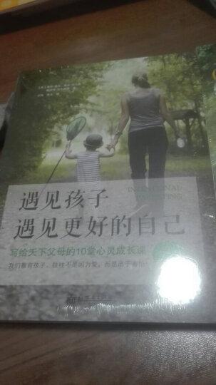全3册 遇见孩子,遇见更好的自己 家庭教育 幼儿童心理教育育儿书籍 好妈妈胜过好老师 晒单图