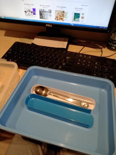 芮家德 大号304不锈钢分格饭盒成人中小学生便当盒分隔餐盘保温密封餐盒 大号蓝色 晒单图