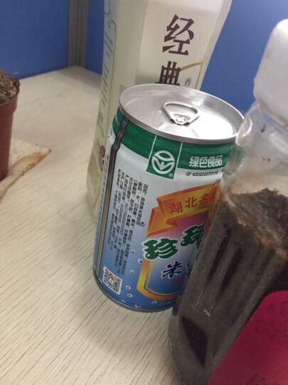 珍珠果米酒醪糟酒酿330g*12罐装绿色食品饮料 晒单图