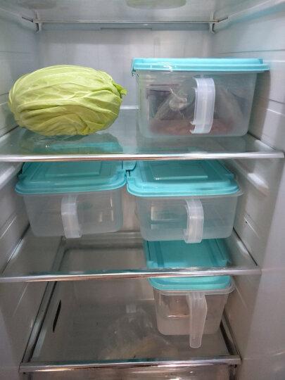 HAIXIN海兴冰箱收纳储物盒水果密封收纳箱食品鸡蛋盒组合装 粉红色4.5L*2 带硅胶圈 晒单图