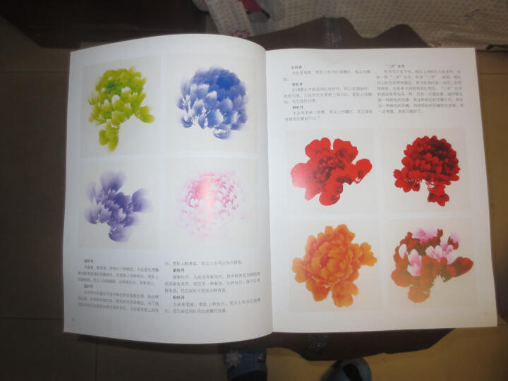 名家画谱:崔庆国写意牡丹 晒单图