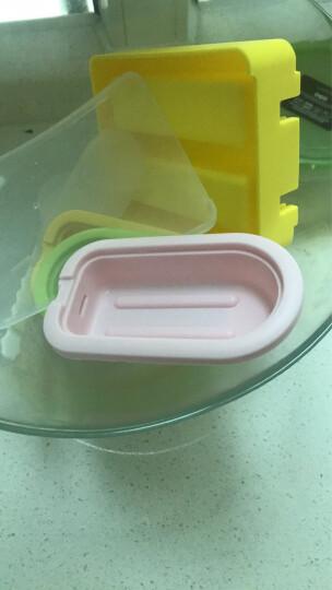 家英 雪糕模具冰棒模具DIY自制冰棍冰糕冰淇淋模具大冰块盒 三色三个装 晒单图