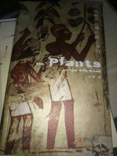 植物在丝绸的路上穿行 晒单图