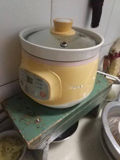 小熊(Bear)电炖锅 电炖盅微电脑预约BB煲煮粥炖汤煲汤锅DDG-D10J2 1L 晒单图