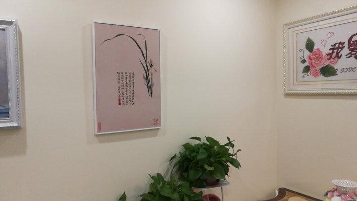 咪卜(MEBOOKER) 新款梅兰竹菊板画防水装饰画浴室防潮画 新中式客厅国画水墨画挂画 菊花-白色框 60*80cm 晒单图
