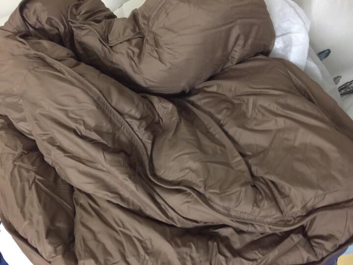 安睡宝被子 鹅绒被芯 俄罗斯进口零压力95%鹅绒被 黑巧克力 220*240cm 晒单图