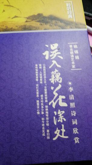唐风宋韵集·李清照诗词欣赏:误入藕花深处(CD+书)(修订版) 晒单图