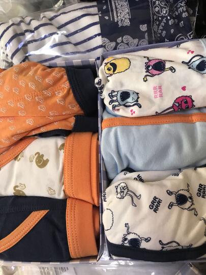 红豆(Hodo)儿童内裤男平角中腰透气中大童95%棉舒适四角裤3条盒装HDK773花色130 晒单图