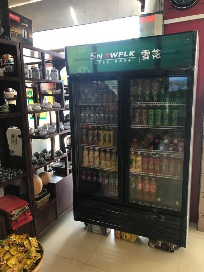 【送货入户】雪花(SNOWFLK)LC-650商用冰柜冰箱立式冷藏双门展示柜饮料饮品保鲜柜陈列柜 晒单图