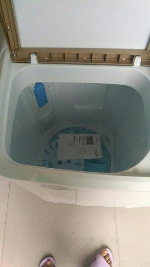 新飞(Frestec) 6 7 8 9公斤半自动双缸双桶大容量波轮家用带甩干洗衣机大家电 XPB76-X8006S 7.6公斤 晒单图