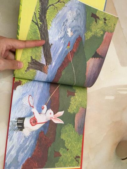 新版林格伦作品选集 美绘版-长袜子皮皮 晒单图