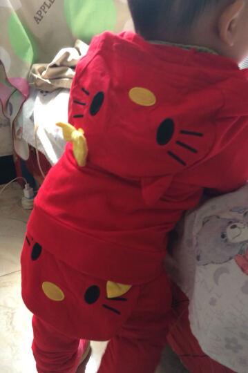0-6个月婴幼儿服装0-1-2岁女宝宝套装棉衣纯棉卡通可爱卫衣儿童装一岁秋装两岁婴儿春秋装 红色 针针绒  加厚小猫套装 90/52(身高87-95cm) 晒单图